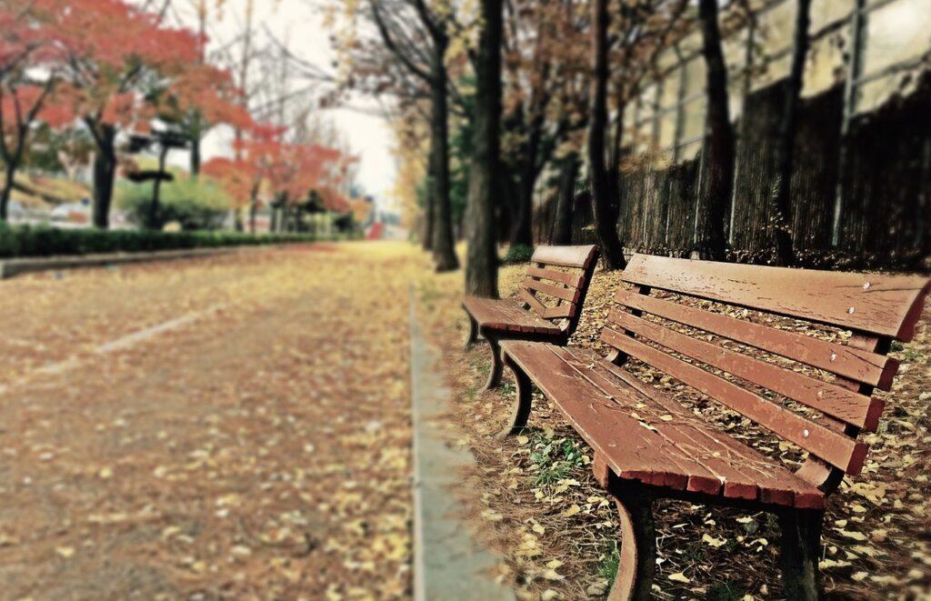bankje park